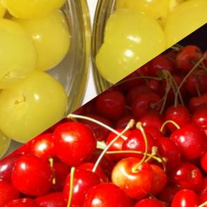 Früchte in SO2
