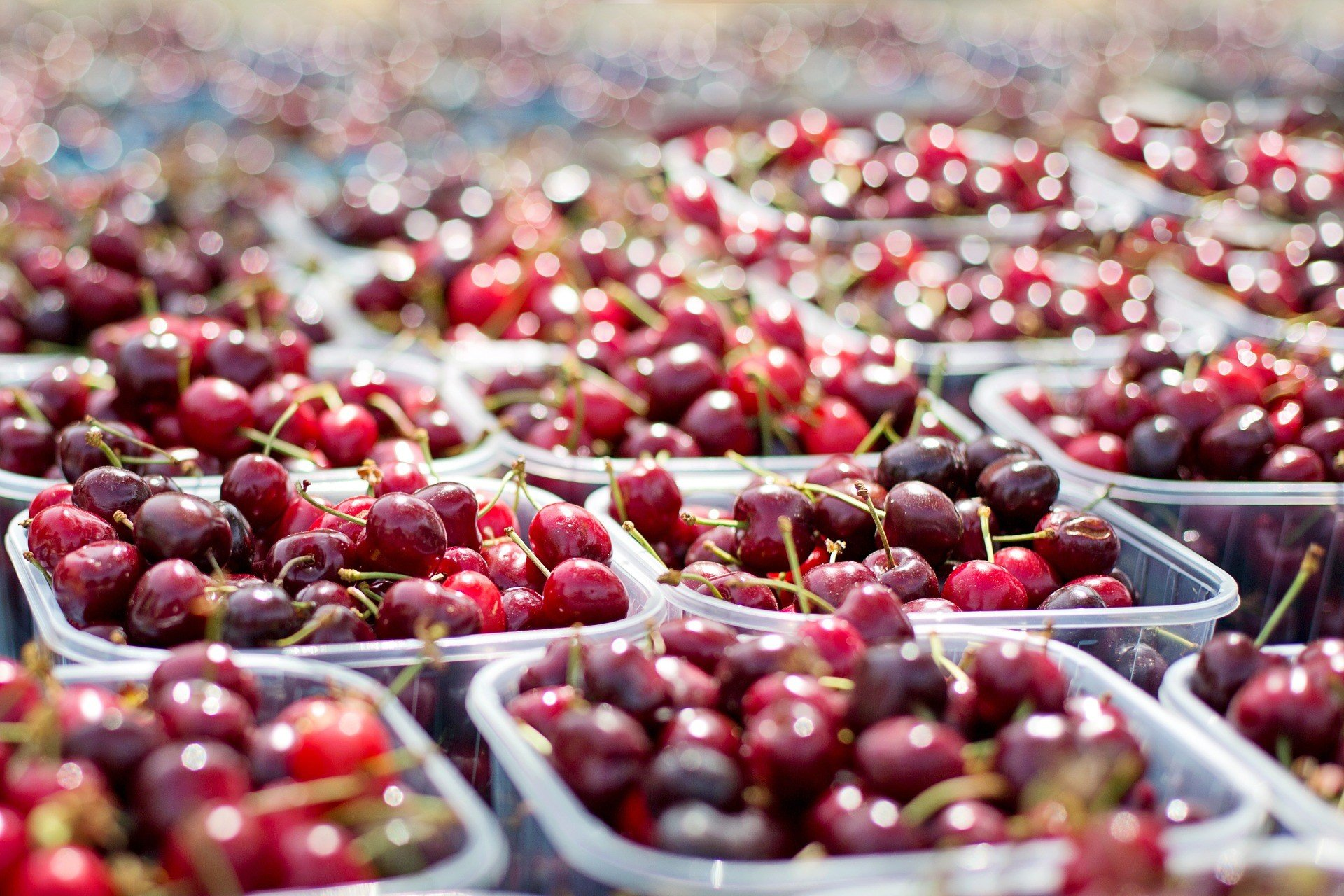 Farmer's Market Tubs Of Cherries Cherries Red Fruit